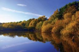 The east pond, Kinneil