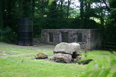 james watt's cottage at kinneil