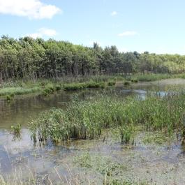 Visit Kinneil And The Kelpies Kinneil Estate Bo Ness