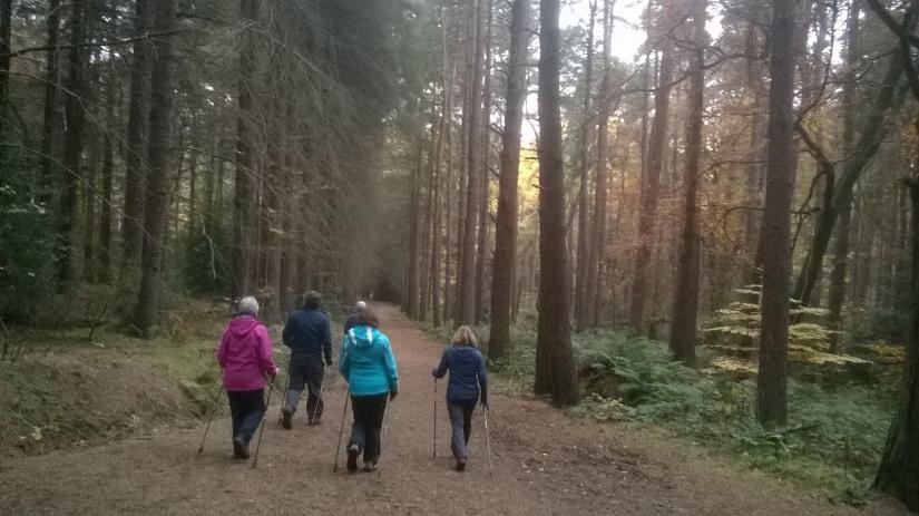 Barbara's Nordic walking group explore Kinneil Woods.